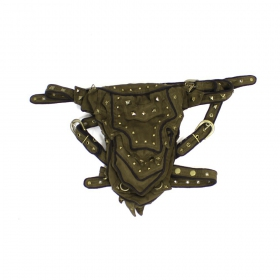 "Belt high clothing ""abracadabra\"", khaki"