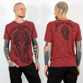 ""\\""""Ganesh face\"""" t-shirt, Coral red""280|280|?|en|2|08ba3220e1f25ddc38c20d7ad1cbf369|False|UNLIKELY|0.30975762009620667