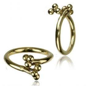 "\\\""Lingappan\\\"" ring"