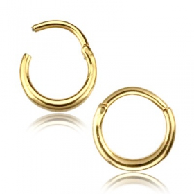 """Salil\"" gold coated nose ring"