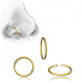 """Small Ring\"" nose ring"